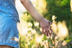 De vrouw geniet gras van bloem in weide Royalty-vrije Stock Foto's