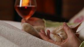 De vrouw geniet van een glas wijn bij de open haard stock video