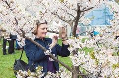 De vrouw geniet van tot bloei komende kersenboom Stock Afbeelding