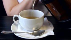 De vrouw giet de thee in een kop stock footage