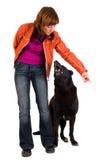 De vrouw is hond opleiding Stock Fotografie
