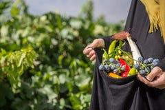 De vrouw houdt in haar handen de oogst van groenten royalty-vrije stock fotografie