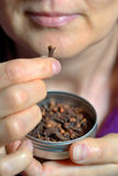 De vrouw kauwt droog kruidnagelkruid Royalty-vrije Stock Foto