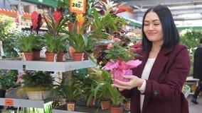 De vrouw kiest bloemen in de opslag Plant afdeling in supermarkt, en huisvrouw het kijken pottenbloem voor huisbinnenland stock video