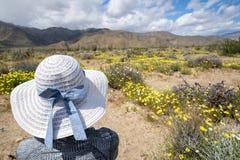 De vrouw kijkt weg aan de bergen, die een witte bonnet van de strohoed met een boog dragen, die door wildflowers wordt omringd stock foto