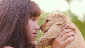 De vrouw kust een puppy stock video