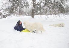 De vrouw leidt een hond in het bos op royalty-vrije stock afbeelding