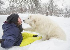 De vrouw leidt een hond in het bos op royalty-vrije stock foto