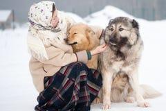 De vrouw leidt Kaukasische Herder en yardhond op een sneeuwgrond in het park op royalty-vrije stock afbeeldingen
