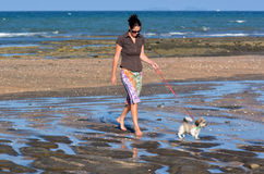 De vrouw loopt haar puppyhond Royalty-vrije Stock Afbeelding