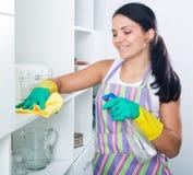 De vrouw maakt huis schoon stock fotografie