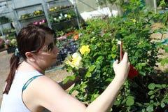 De vrouw maakt selfie onder de bloemen royalty-vrije stock afbeelding