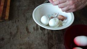 De vrouw maakt shell van gekookte eieren schoon stock video