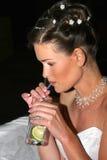 De vrouw met een cocktail. royalty-vrije stock afbeeldingen