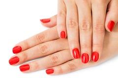 De vrouw met mooi manicured rode vingernagels Stock Foto's