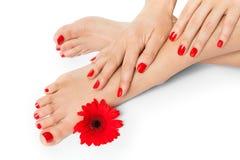 De vrouw met mooi rood manicured spijkers stock fotografie