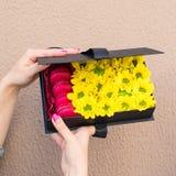 De vrouw ontving een zwarte giftdoos met zonnebloemen en heldere Frenc Stock Fotografie