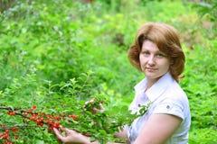 De vrouw oogst kersen in een tuin royalty-vrije stock afbeelding
