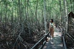 De vrouw is op de gang in mangrovebos Royalty-vrije Stock Afbeelding