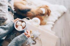De vrouw overhandigt ith kop van heet chocolade dicht omhooggaand beeld, comfortabel huis, Royalty-vrije Stock Foto's