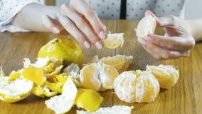 De vrouw pelt met de hand een mandarijn De handen sluiten omhoog stock videobeelden