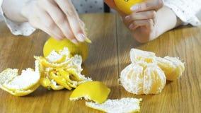 De vrouw pelt met de hand een mandarijn De handen sluiten omhoog stock video
