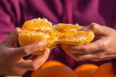 De vrouw pelt sinaasappelen van schil royalty-vrije stock foto