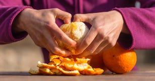 De vrouw pelt sinaasappelen van schil royalty-vrije stock fotografie