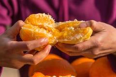De vrouw pelt sinaasappelen van schil stock afbeelding