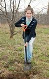 De vrouw plaatst boom in tuin royalty-vrije stock fotografie