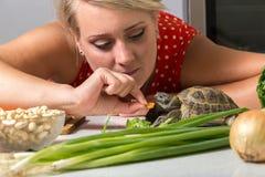De vrouw probeert om Russische schildpad met stuk van wortel te voeden Royalty-vrije Stock Afbeelding