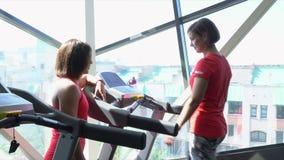 De vrouw raadpleegt over de trainer tot dusver gaat op een renbaan De vrouw spreekt met een helft-andere tijdens de opleiding op  stock footage