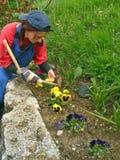 De vrouw regelt zijn bloemtuinen Royalty-vrije Stock Foto's