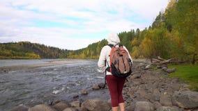 De vrouw de reiziger kost op de bank van de bergrivier Daling stock video