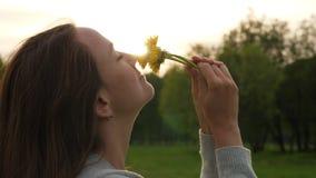 De vrouw ruikt gebiedsbloemen, gezicht en paardebloemen dichte omhooggaand stock video