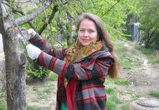 De vrouw snijdt de tak van een boom in de tuin af Stock Afbeelding