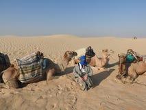 De vrouw in de tulband, het gezicht is gesloten, met een kameel in de woestijn van de Sahara stock foto's