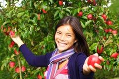De vrouw van de appel Stock Afbeeldingen