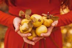 De vrouw van de appel Zeer mooi etnisch model die rode appel in het park eten Stock Afbeeldingen