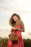 De vrouw van de picknick Stock Fotografie