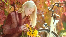 De vrouw van de herfst Mooie vrouw die in het bos op een dalingsdag loopt Het dromerige meisje met lang haar breit binnen sweater stock video