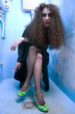 De vrouw van het toilet Stock Foto