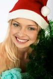 De vrouw van Kerstmis. Royalty-vrije Stock Foto