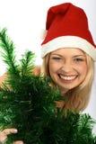 De vrouw van Kerstmis. Royalty-vrije Stock Afbeelding