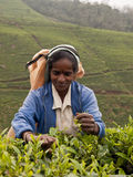 De vrouw van Sri Lanka Stock Fotografie