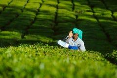 De vrouw van de theeplukker verzamelt bladeren bij aanplanting amond groene struiken 20 februari 2018 Munnar, India Stock Foto's