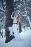 De Vrouw van de de winterschoonheid Mooi mannequinmeisje met sneeuwkapsel en make-up in de de winter bos Feestelijke make-up en d royalty-vrije stock foto