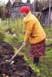De vrouw verwerkt grond op een moestuin Royalty-vrije Stock Afbeelding
