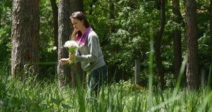 De vrouw verzamelt paardebloemen in het bos stock footage