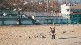 De vrouw voedt de Hongerige Zeemeeuwen die over het de Winter Overzeese Strand vliegen Langzame Motie stock videobeelden